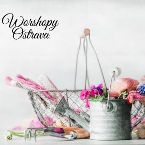 Odpolední workshopy Ostrava